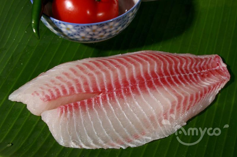 Tilapia Fillet High Quality from China