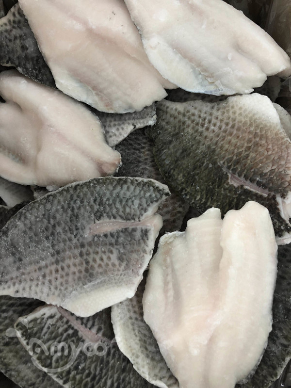 Skin on tilapia fillet